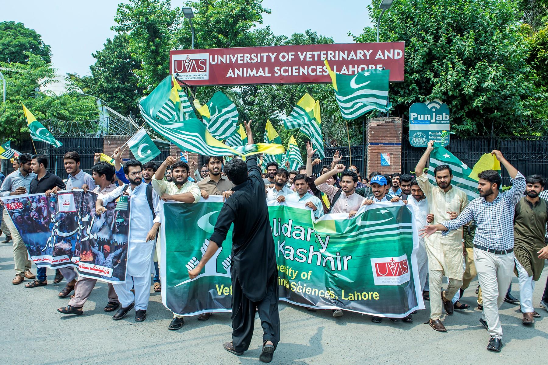 UVAS-Kashmir 1